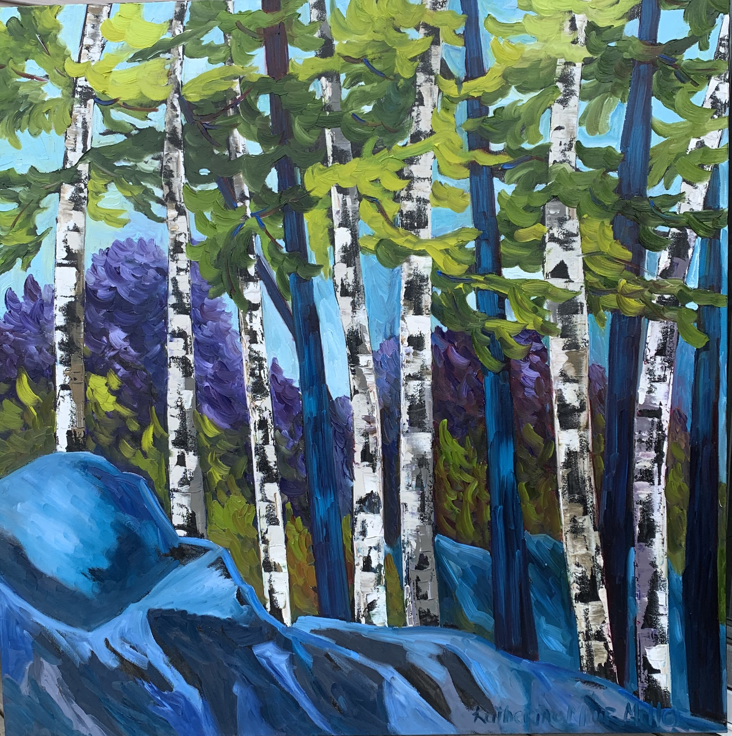 545 Birches of Blue
