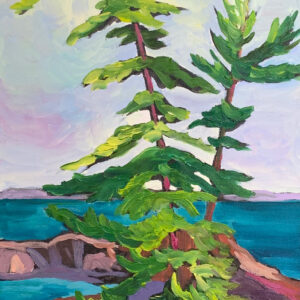 554-Island on a Georgian Bay